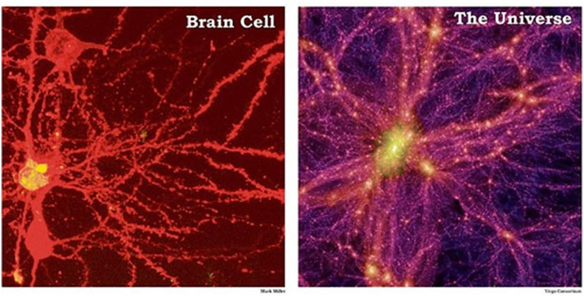 Potage 1 : Neurones, Galaxies, Sectes et Rock'n'Roll